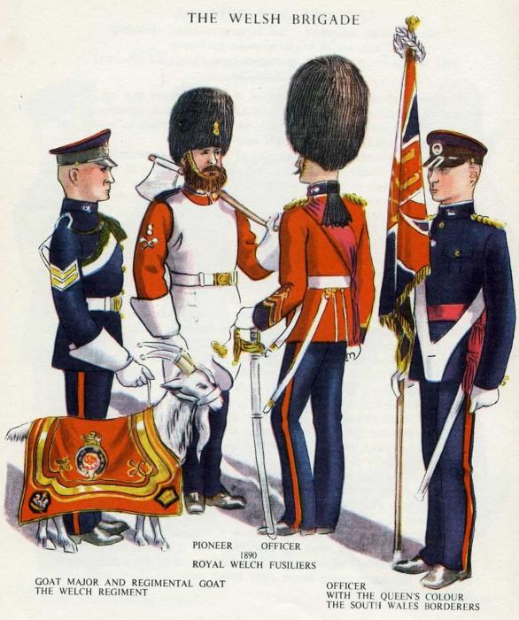Welsh Brigade Illustraton resized.JPG