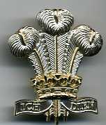 Royal Regt of Wales 2nd Pattern Cap Badge low res040.jpg