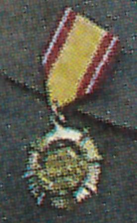 North Korean medal.jpg