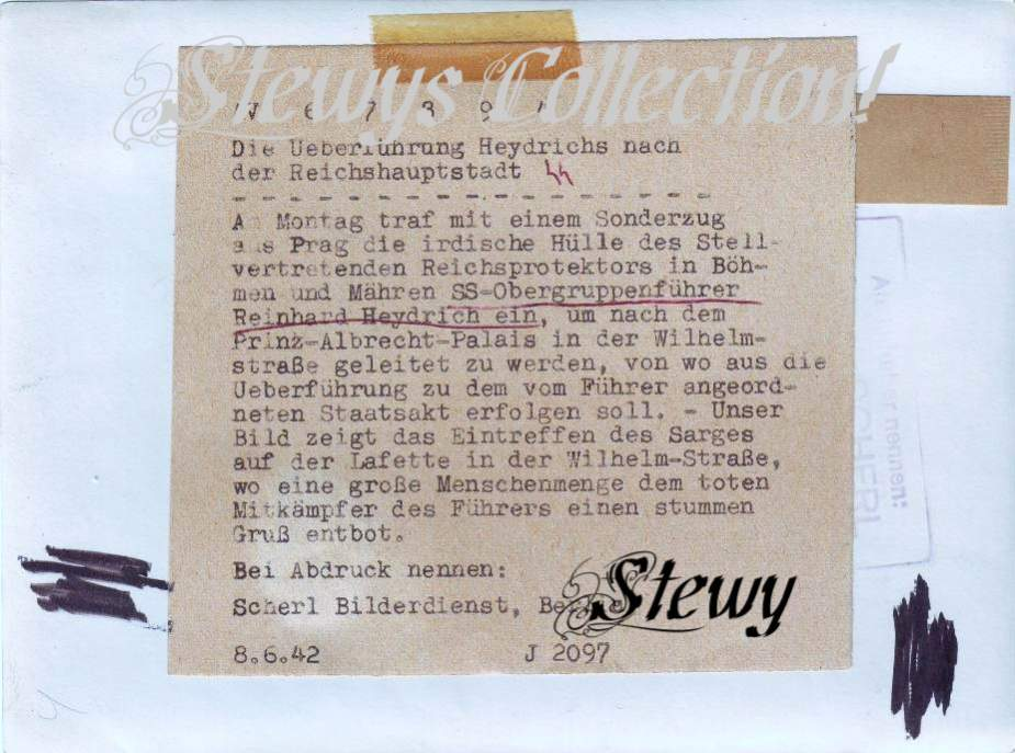 Stewy12.jpg