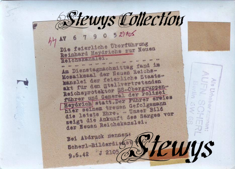 Stewy_14.jpg