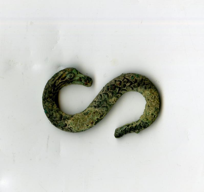 img081 small snake.jpg