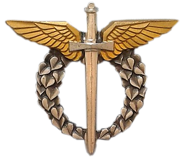 cz pilot.png