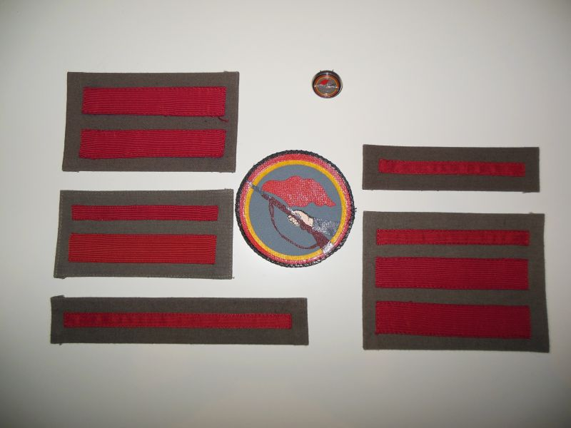 insignia patch.jpg
