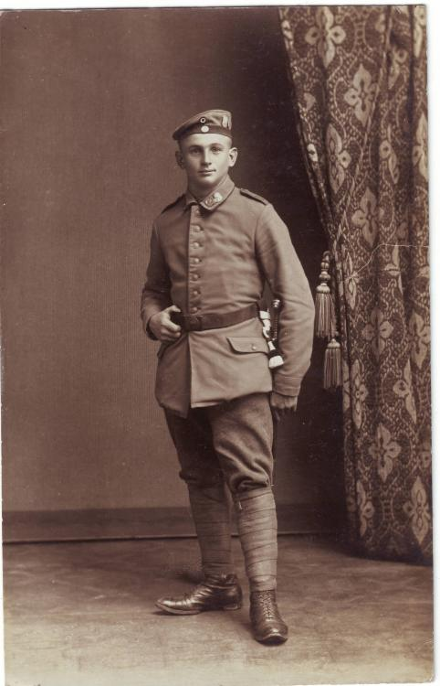 b. Feldart.Rgt. 19 oder 20  Verbandsabzeichen, 21.Korps, b.10.Inf.Div., Böhm-Ermolli, Erzherzog Carl) .JPG