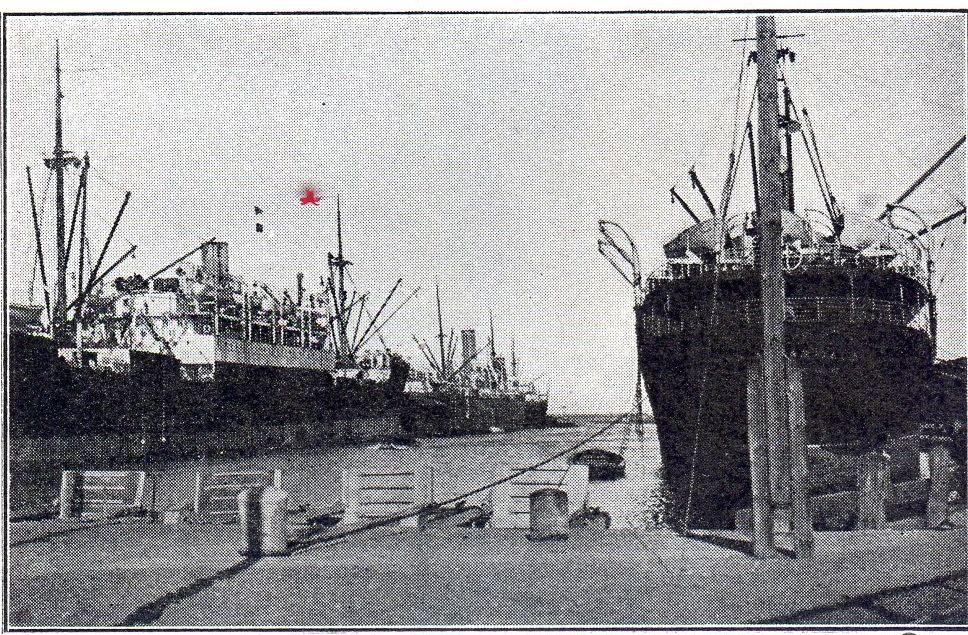 Neufahrwasser harbour.jpg