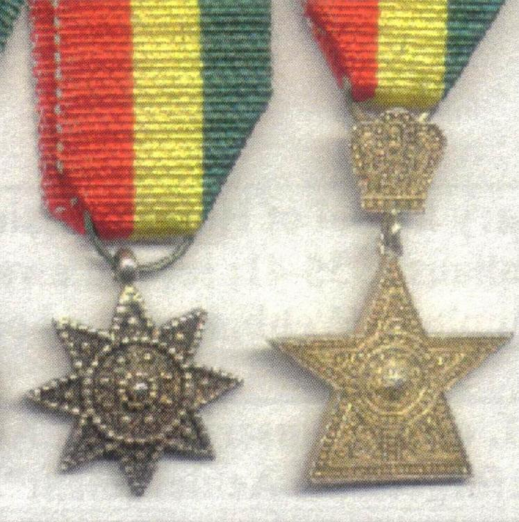 Ethiopia Star Miniatures Radman Detail.jpg