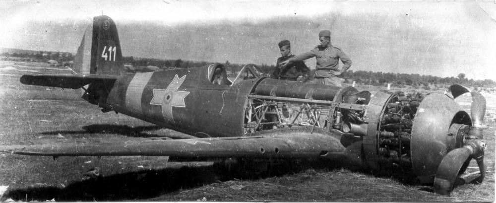 IAR-80-4.jpg