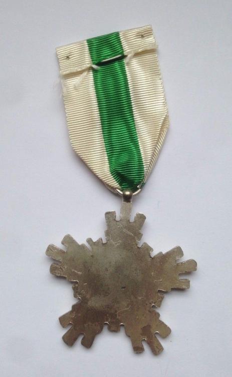 Syria Merit Badge Variant Reverse.jpg