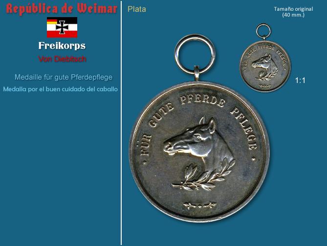 MedaillefrgutePferdepflege.PNG