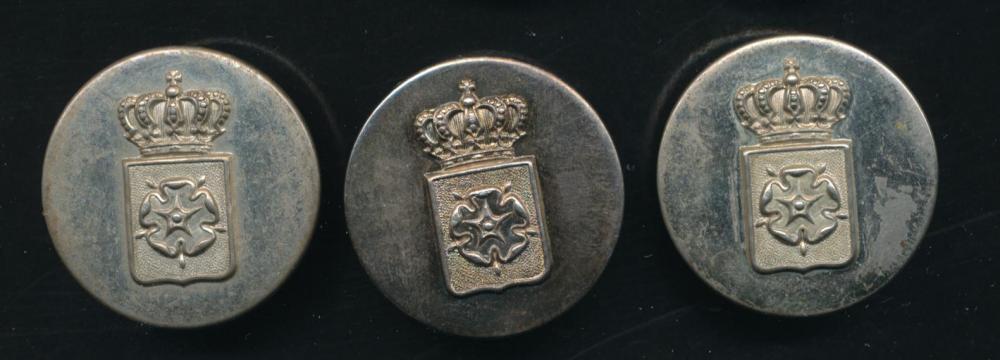 Lippe-Knopf-Wappen mit Rose + Krone eckig.jpg