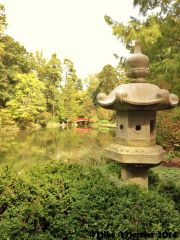 Japanese lantern and bridge