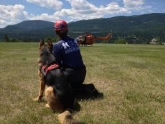 BC South Columbia SAR K9 team