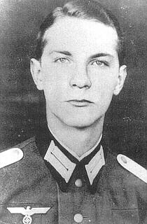 Kleistschmenzin1.jpg
