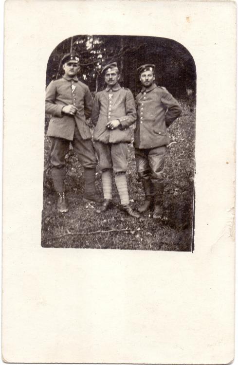 b. 8.Res.Pi.Kp. (Lederbesatz, Verbandsabzeichen b.8.Res.Div., Heeresfront Erzherzog Karl).jpg