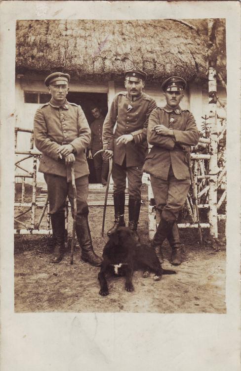 b.22.Inf.Rgt. (Verbandsabzeichen b.11.Inf.Div., Schulterklappe 2).JPG