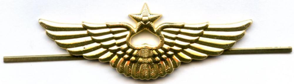 56edbd46ed293_capwingsRussia.thumb.jpg.5