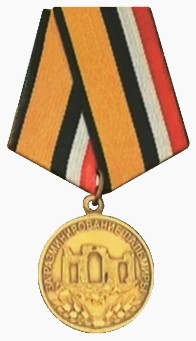 medal for the demining of Palmyra.jpg