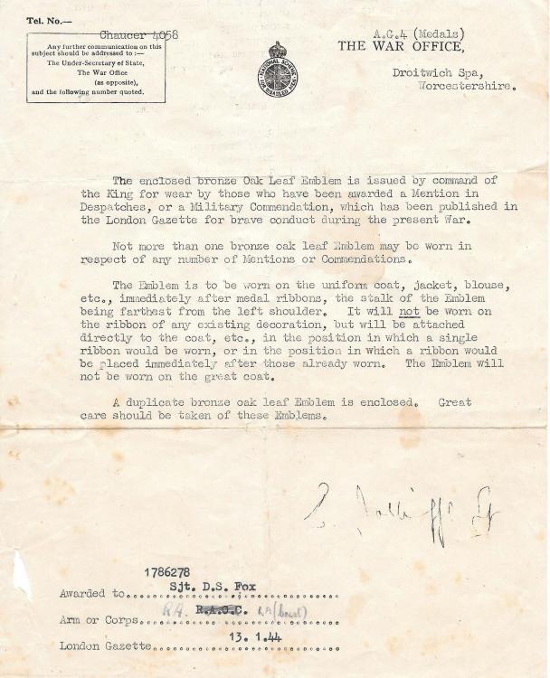 Fox MiD Emblem Letter 130144.jpeg