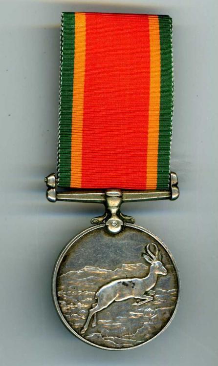 africa medal.jpg