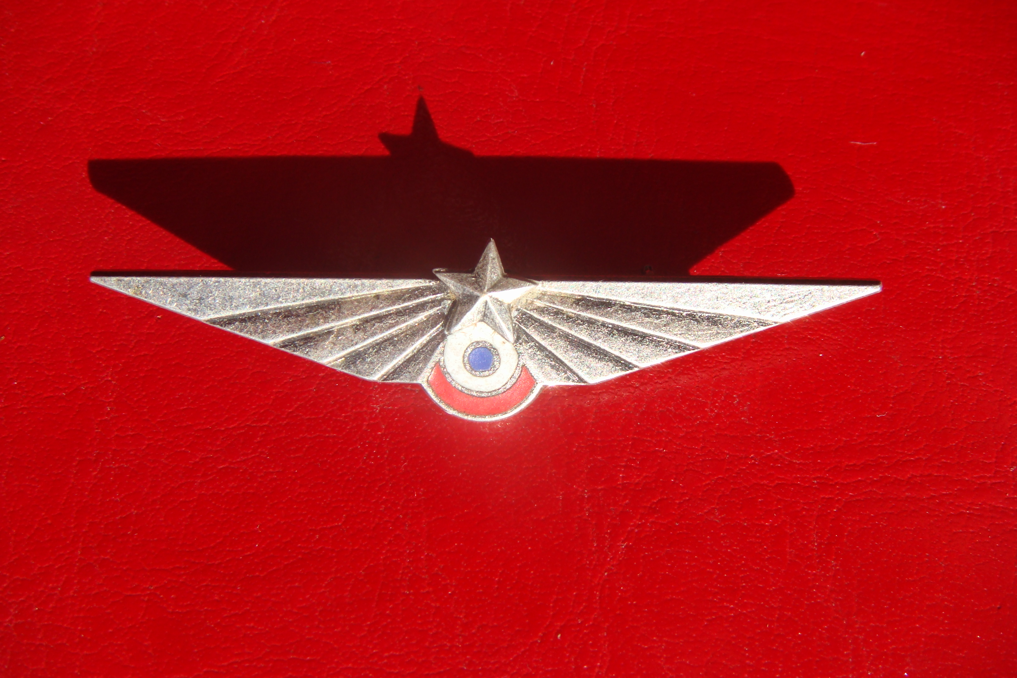 please help with this french air force fighter squadron wing badge
