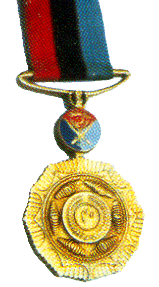 SVC_MEDAL-40_YEARS_copy.png