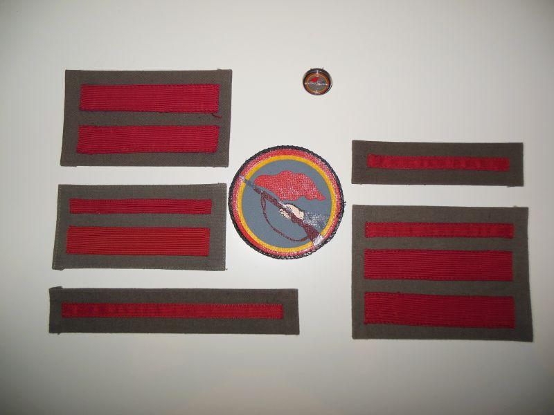 insignia patch.jpg