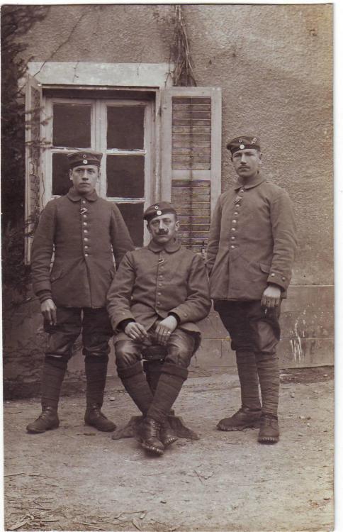 Alpenkorps ( Edelweiß, Gebirgsstiefelhose).JPG