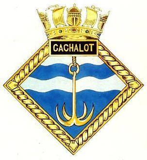 CACHALOT_badge-1-.jpg