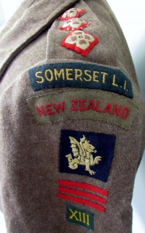 Somerset_BD_badges.JPG