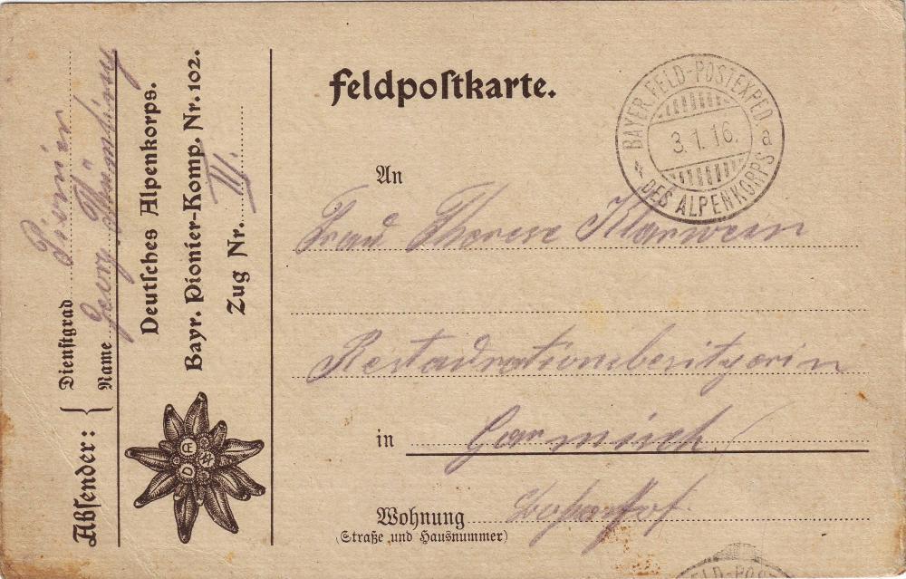 Pio.Kp. 102 (Alpenkorps, D.OE.AV. Edelweiß, Verbandsabzeichen).JPG