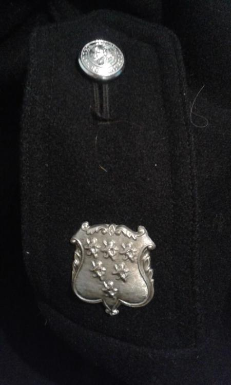 Police badge shoulder Cheshire.jpg