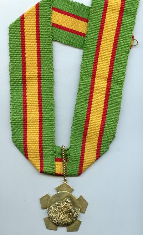 Guyana Order of Roraima with ribbon.jpg