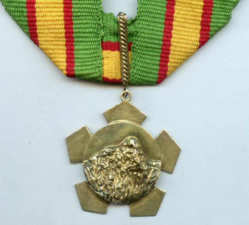 Guyana Order of Roraima obverse.jpg