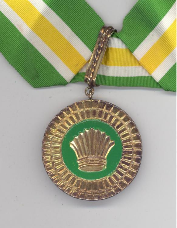 Guyana Cacique Crown of Honour obverse.jpg