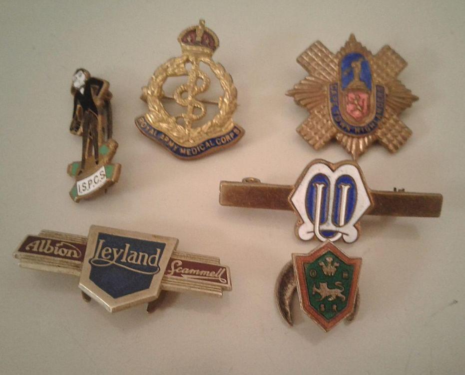 Badges.thumb.jpg.869bf378689301e8101a13192312661d.jpg