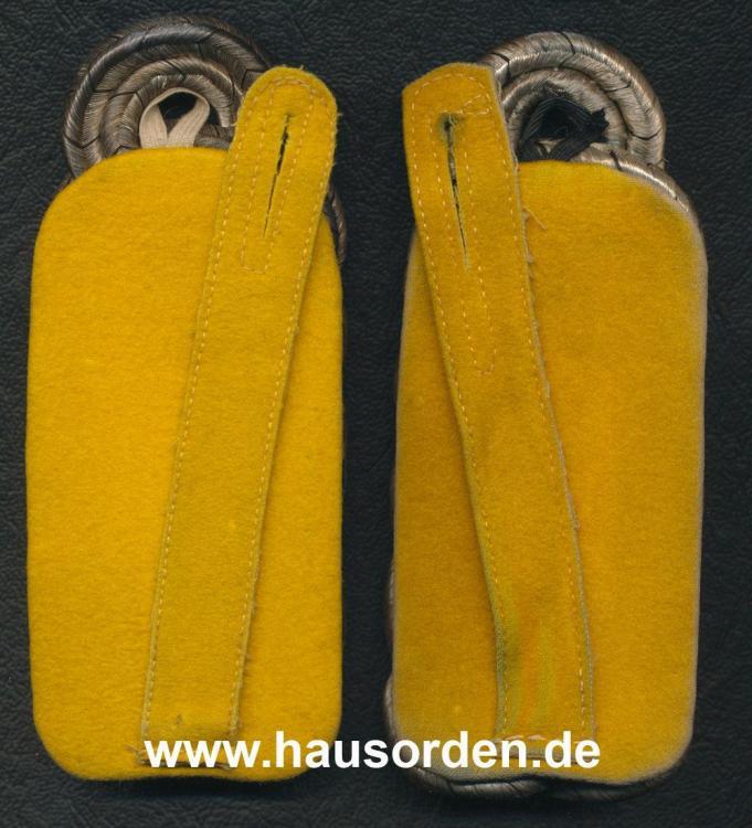 747572262_Schulterklappen-AdolfMetzeIR22-RS-web.thumb.jpg.f36cf8ae1ae54af21f02e7796bb14db4.jpg