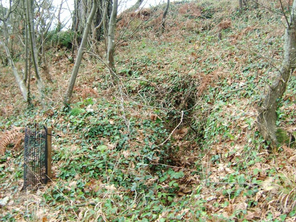 Fowey 2006 054.jpg