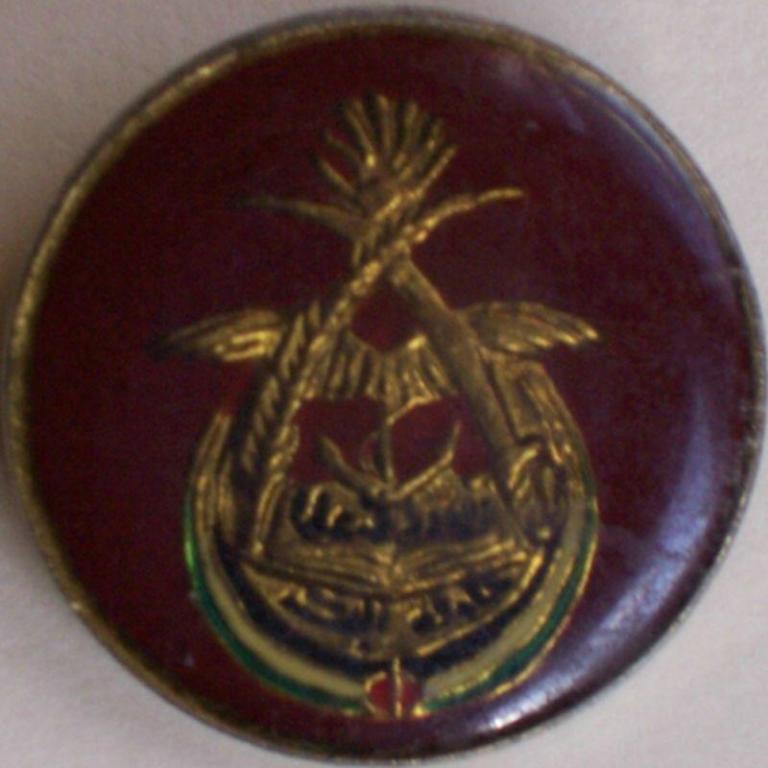Al Bakir badge.jpg