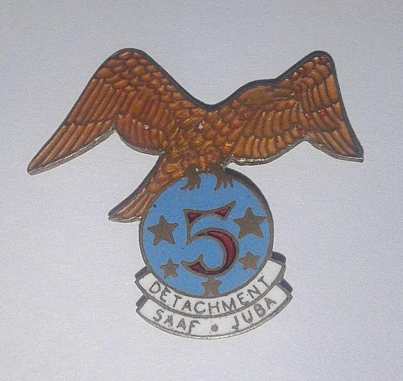 Possible 5th Wing WW2 SAAF Pin Badge.jpg