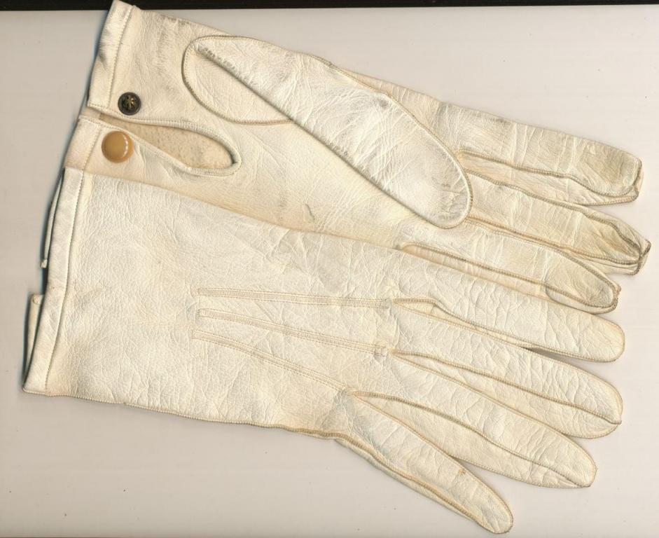 gloves.thumb.jpg.90df6b995d70950ee12952cc24f45be0.jpg