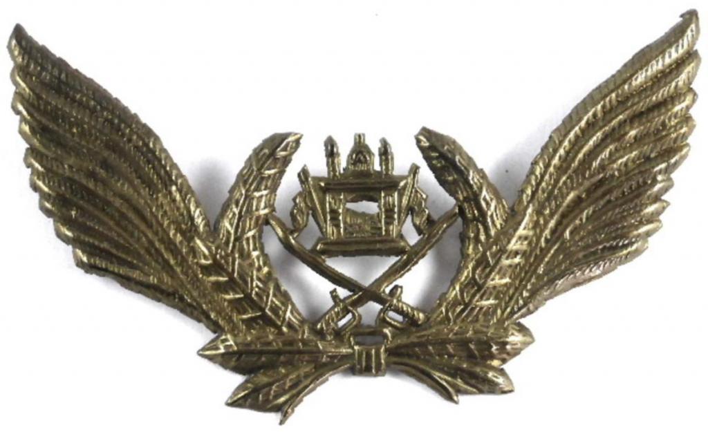 Afgh Cap Badge AF typ 3 var 1.jpg