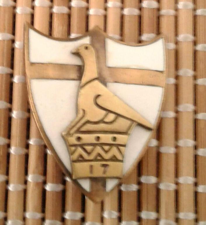 Rhodesian Field Battery Artillery Officer's Mess Dress Badge.jpg