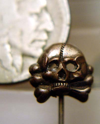 skull01aweb.jpg